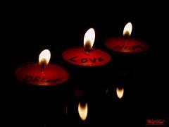 ideas para enamorar