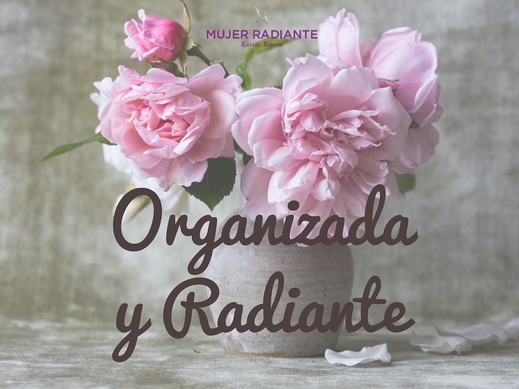 Organizaday Radiante (5)